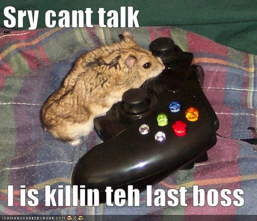 Sry cant talk I is killin teh last boss