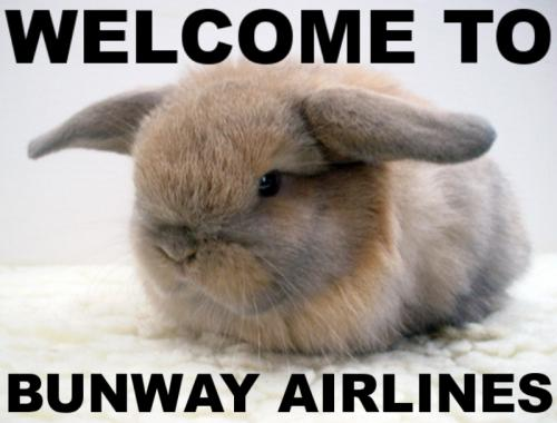 WELCOME TO BUNWAY AIRLINES