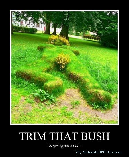 TRIM THAT BUSH
