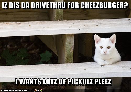 IZ DIS DA DRIVETHRU FOR CHEEZBURGER
