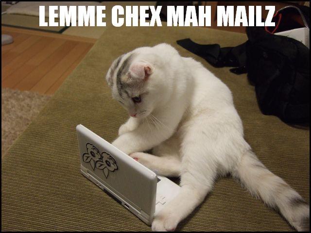 LEMME CHEX MAH MAILZ