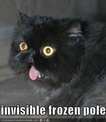 invisible frozen pole