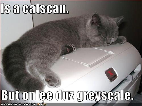 Is a catscan but onlee duz greyscale