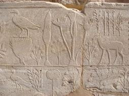 Jardin Botánico de Karnak