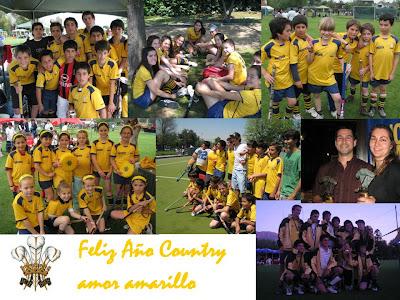 amor amarillo. amor amarillo. en equipo y