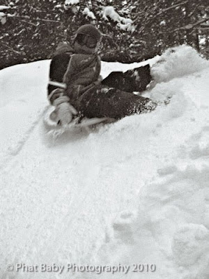 Baby Sledding Photography