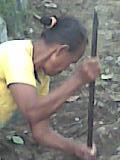 Pekerja Wanita
