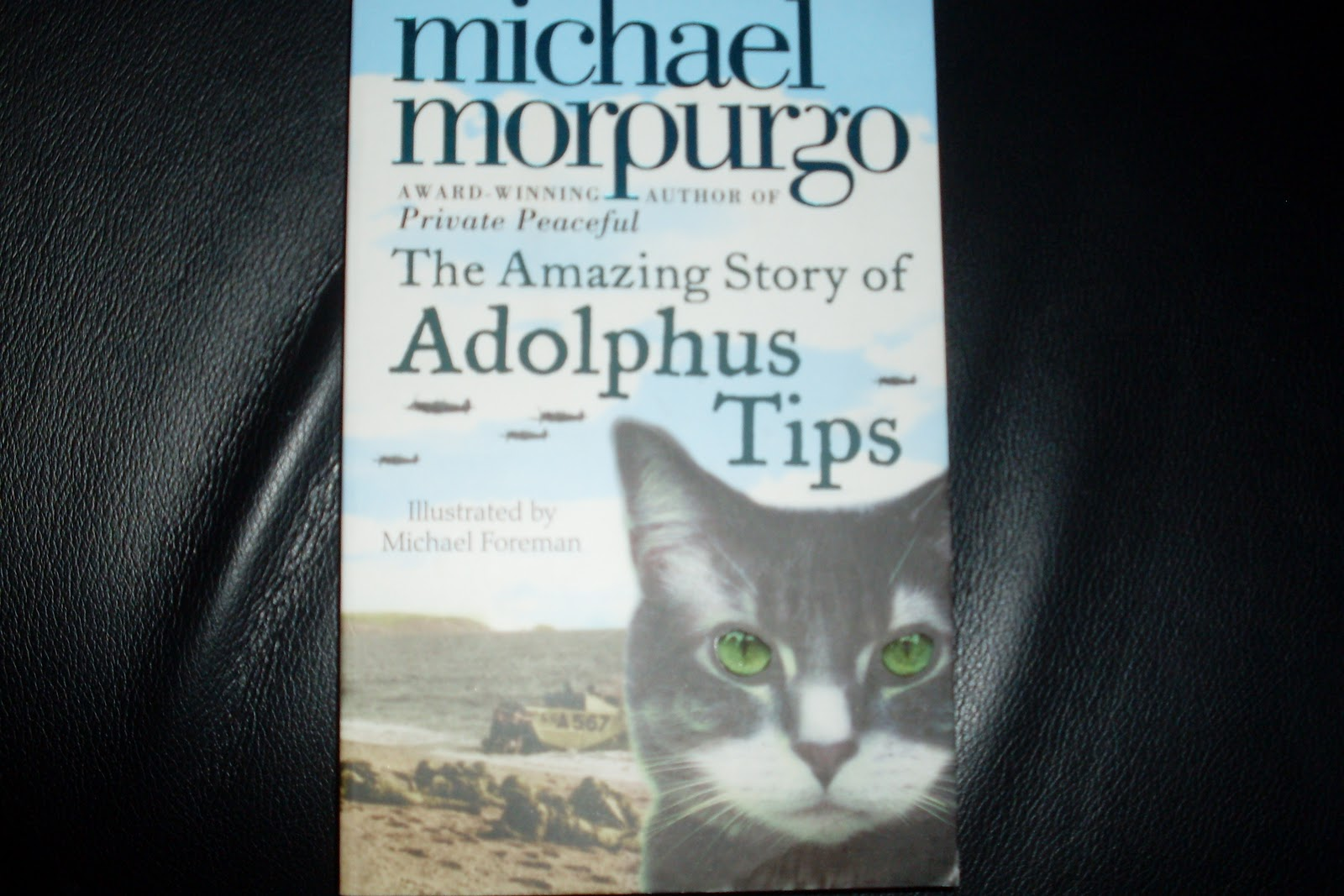 adolphus tips book report The amazing story of adolphus tips keep out danger it's 1943 battles are raging across europe now the shadow of war has come to lily's seaside village in devon  when i started this book,i thought it would be boring, but then it got better and better this is the one of the best books read it 3 october 2016 minecraft2006.