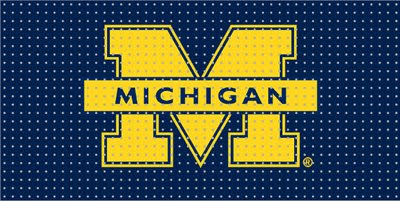 University of Michigan pegboard