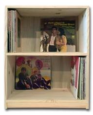 vinyl record rack