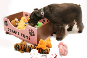 dog toy box, pink, with dog