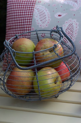 wire fruit / egg basket - with apples