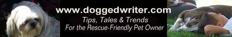 Dogged Writer