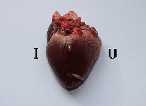 http://1.bp.blogspot.com/_tg42ArcfTzU/TKtISn6pxcI/AAAAAAAABpM/oeRp5G_dqRg/s1600/Love+Heart.jpg