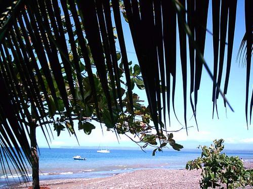 Playa Agujas, Puntarenas