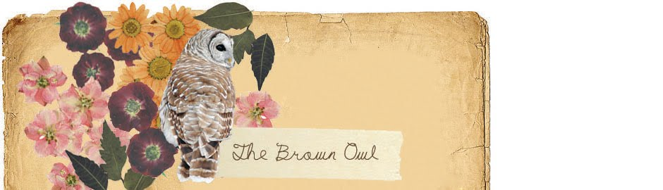 The Brown Owl