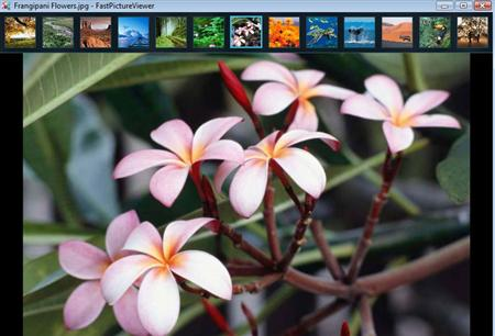 FastPictureViewer x64 full screenshot