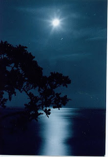 malam hari