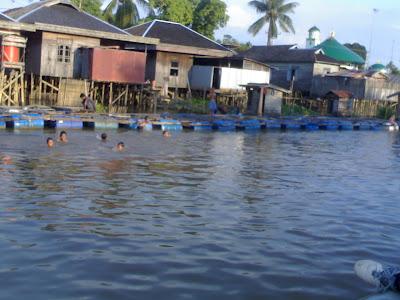 Gambar 2. anak-anak yang sedang mandi di sungai dan eceng gondok yang