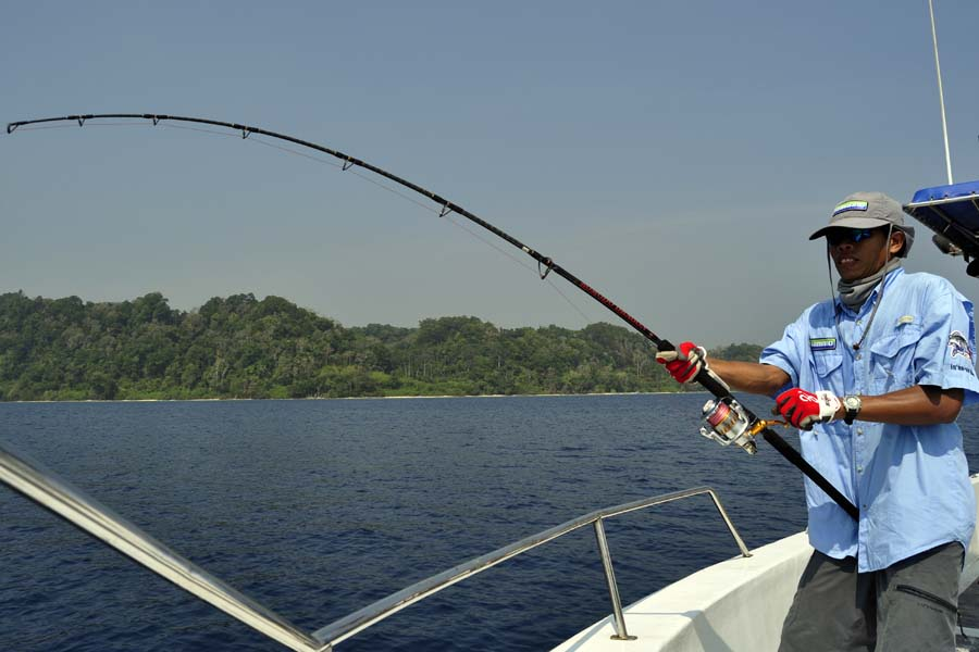 Vicious strikes fishing charters port charlotte fl for Port charlotte fishing charters