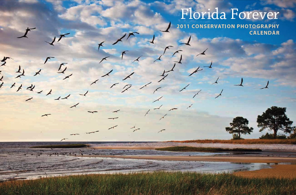 The Florida Forever 2011 Conservation Photography Calendar measures 9-by-13