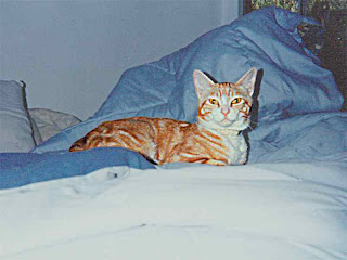 OJ on his bed- mid nineties