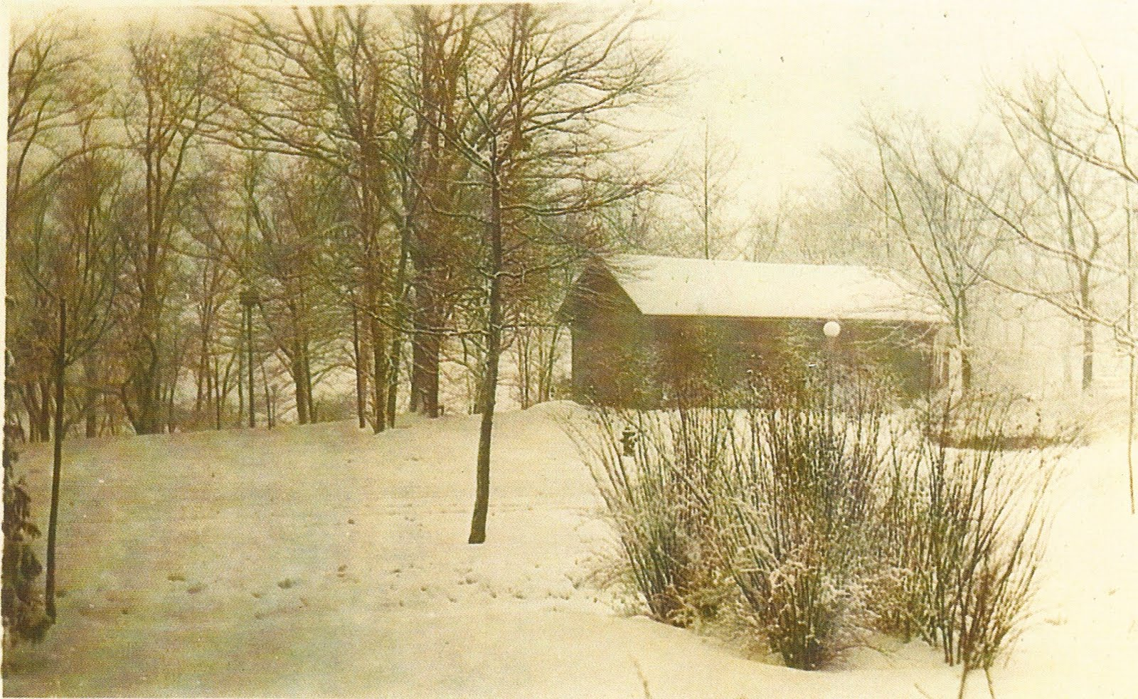 Vintage Irvington: Ellenberger Park
