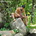 【沙巴玩】 亚庇 : 来来文化村 Fun in Sabah : Kota Kinabalu - All about Mari-Mari Cultural Village