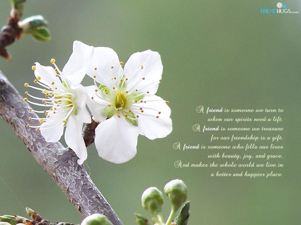 http://1.bp.blogspot.com/_tp4Y2FZr8rI/TUtMoS4cmyI/AAAAAAAAAGc/ikln1tMIWZs/s1600/friendship-poem-wallpaper5.jpg