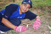 Mr Fungus