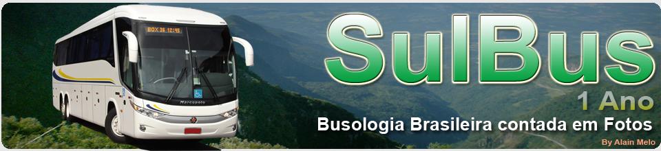 SULBUS - 1 Ano