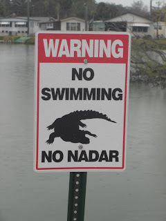 Picture of a sign in front of the lake. It says - Warning No Swimming, No Nadar. And has a picture of an Alligator on it