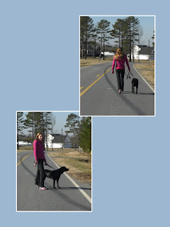 Layout of 2 pictures, both are of Duchess & I, we are on the road going for a walk