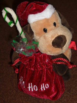 Picture of the very cute Stuffed doggie & treats that we received
