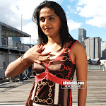 Anushka Spicy Pictures From The Movie Swagatham