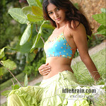 South Side (ileana)  terrific !!!