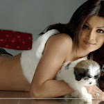 Koena Mitra Hot Girl From Bollywood
