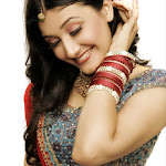 South New Hot Beauty Ragini Khanna