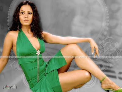 hot TELEGU ACTRESS Neethu Chandra Hot pics bikini Wallpapers picutres Gallery