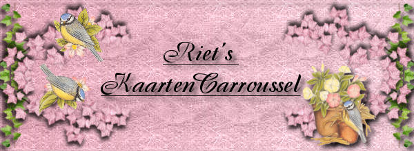 Riet's KaartenCarroussel