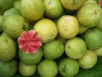 http://1.bp.blogspot.com/_twrF4FMN5jI/StGcl29-1iI/AAAAAAAAAH8/GAkdj0o4Tyw/s320/guava-bangalore.jpg