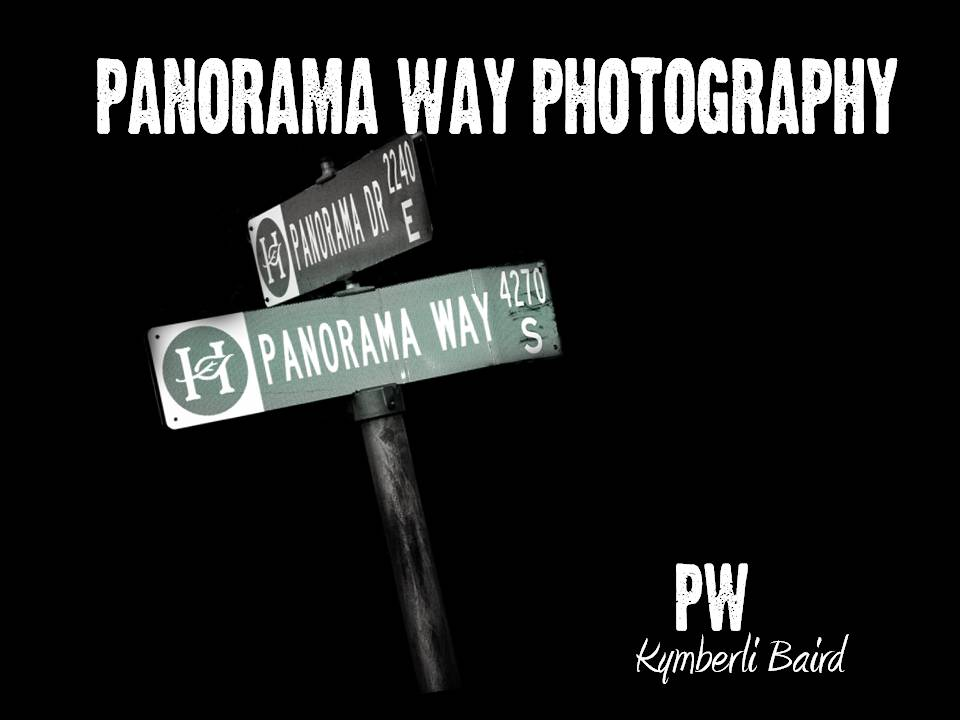Panorama Way Photography