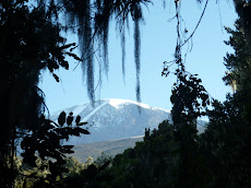 A final view of Mt. Kilimanjaro