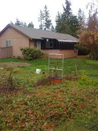 Large Fenced Yard