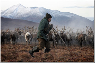 Chukchas on pasture