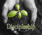 Discipleship and Mentorship