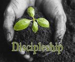 Discipleship and Mentorship