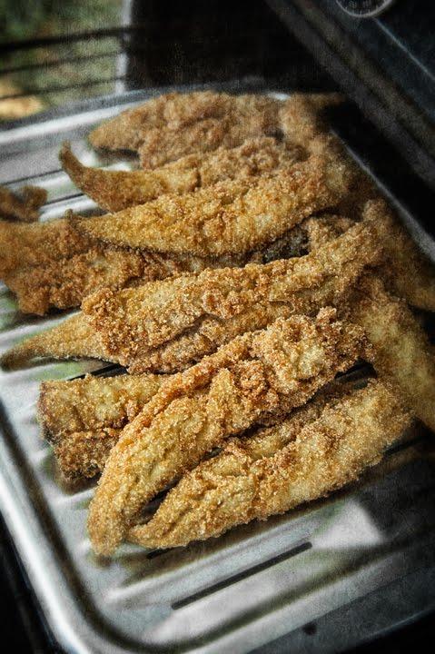 Dan routh photography october 2010 for Carolina fish fry