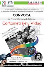 Cortometraje y Video