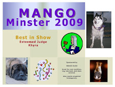 Thanks Mango!